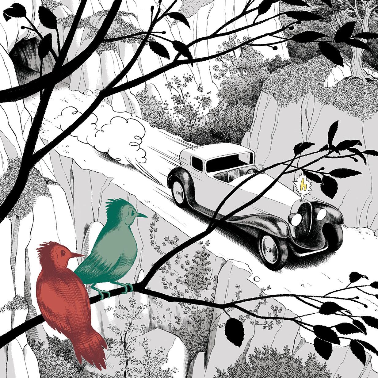 oiseaux-quantique